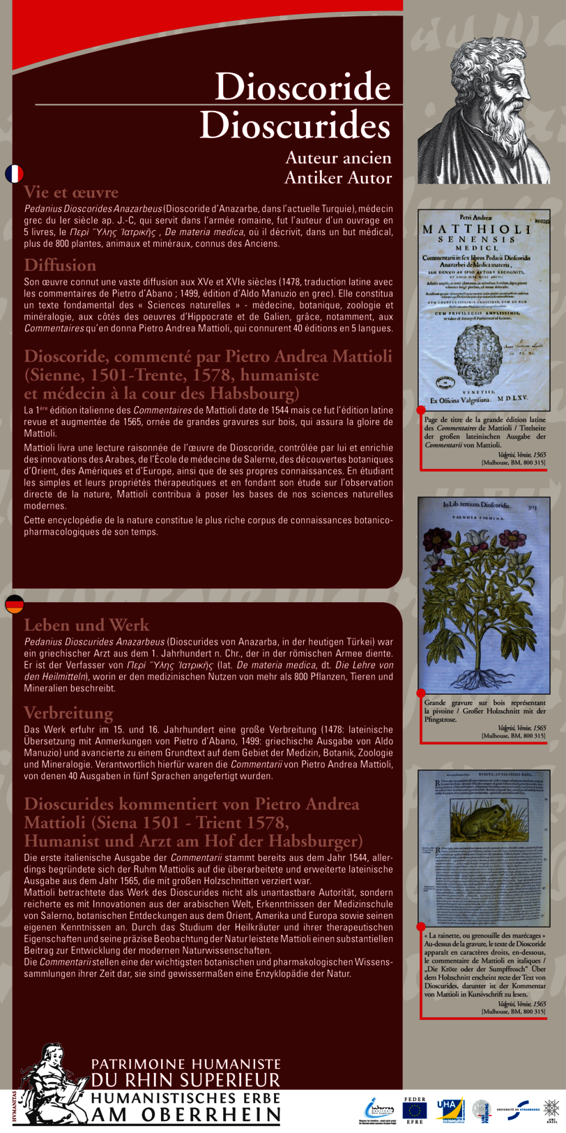 Ausstellungstafel als PDF